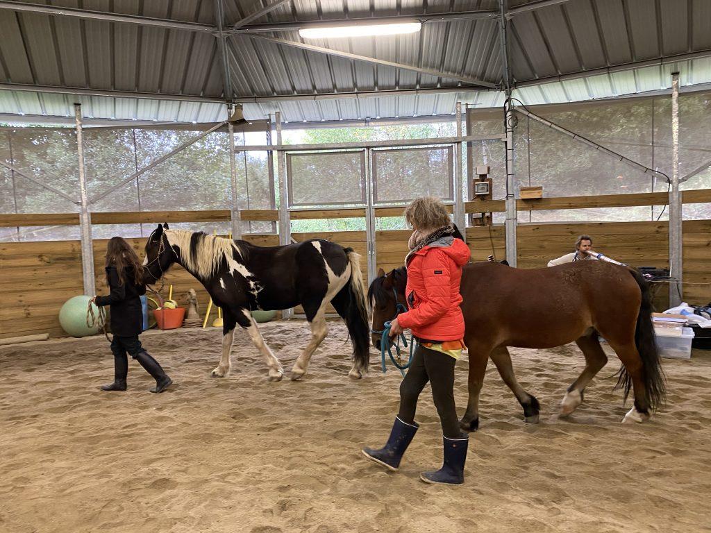 stage des chevaux aux sons des accords toltèques